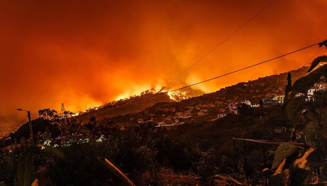 mill valley fire